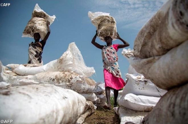 Papa Francisco faz doação à FAO para ajudar países da África Oriental