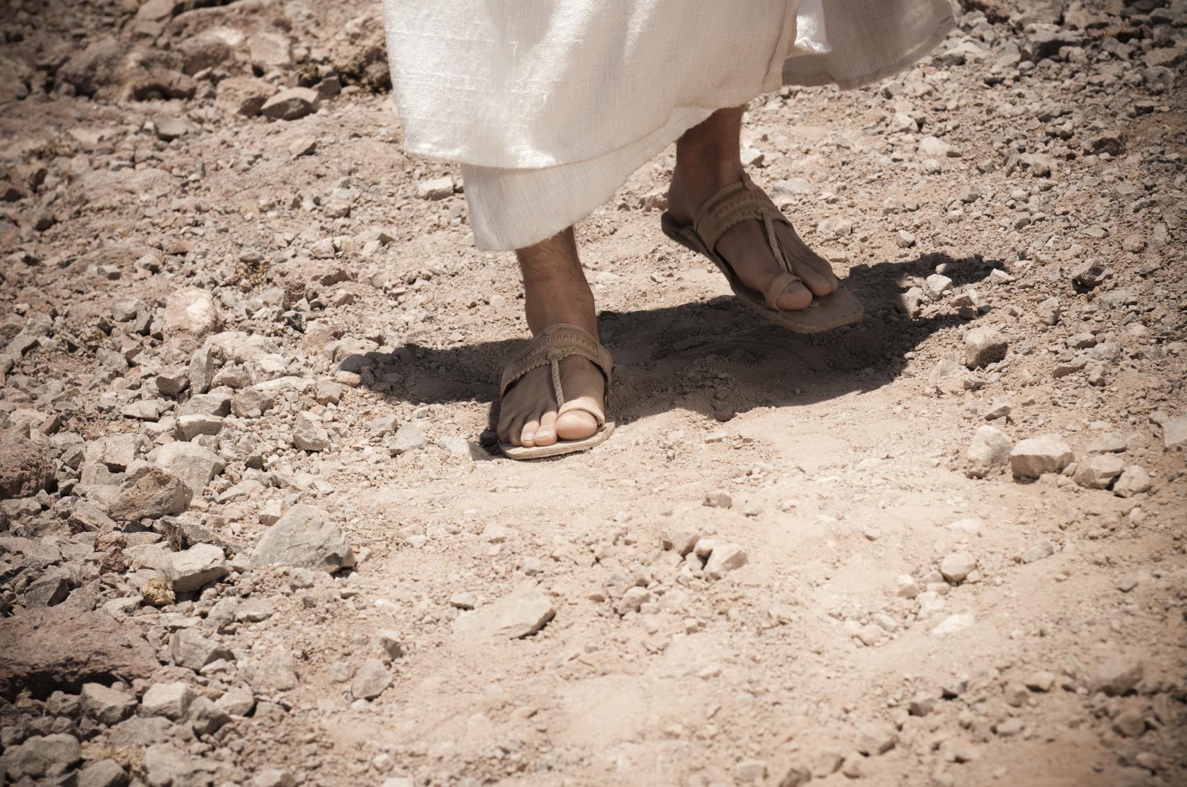 Os passos da misericórdia