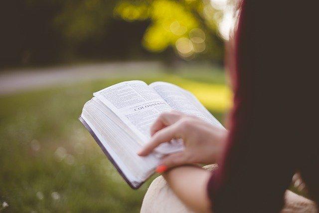 A santidade está ao alcance de todos e de qualquer cristão
